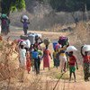 Refugees cross into Chad by foot from the Central African Republic (CAR). (file)