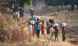 Всышка насилия в ЦАР привела к массовому исходу местных жителей. На фото граница ЦАР с Чадом (архив)