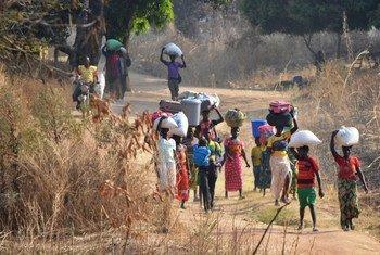 Des réfugiés arrivent au Tchad à pied depuis la République centrafricaine (RCA). (Photo d'archives)