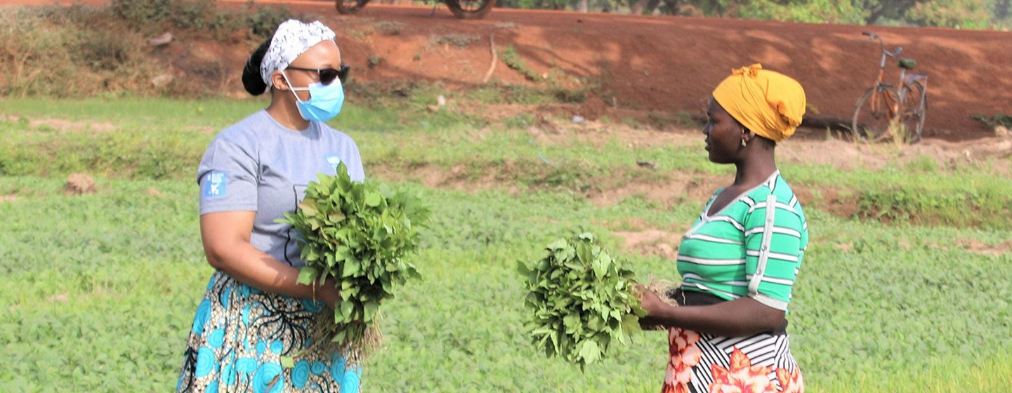 Women farmers in Ghana are being encouraged to adapt to changes in the climate.