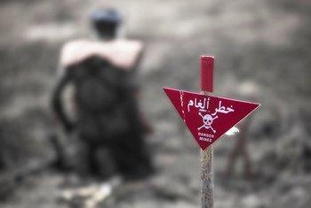 Mostra reúne registros de quem vive o desafio diário de encontrar e desarmar minas terrestres.