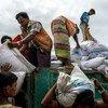 Des travailleurs réfugiés rohingyas distribuent des sacs de riz et de lentilles à un point de distribution du Programme alimentaire mondial (PAM) dans le camp de Kutupalong, au Bangladesh.