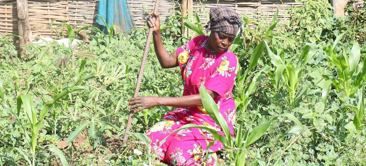 A woman tends to her garden in Juba, South Sudan, where she returned in July 2021 following two decades of displacement in Sudan.