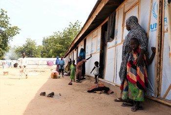 尼日利亚博尔诺州的持续冲突迫使更多人在这个名叫巴马的小镇的流离失所者营地中寻找庇护所。
