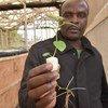 Rwandan entrepreneur Apollinaire Karegeya is growing potatoes without soil and with little water.