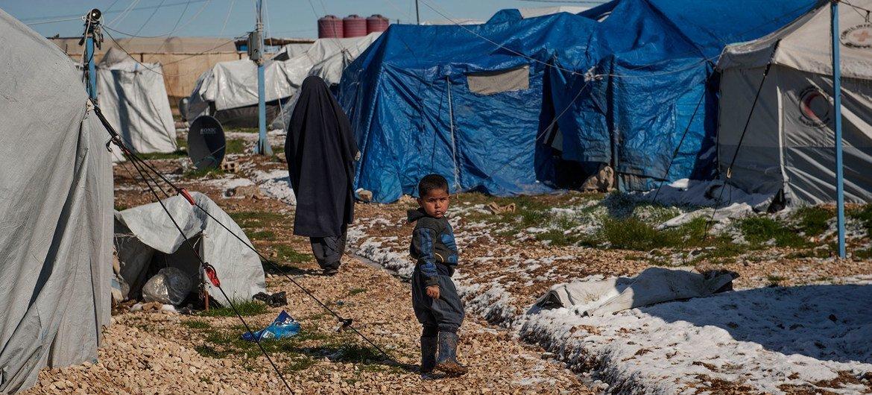 Так выглядит лагерь Родж на северо-востоке Сирии, где содержатся семьи, предположительно связанные с террористами.