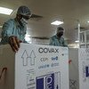 Empleados de UNICEF en la India se preparan para exportar un cargamento de vacunas de COVAX.