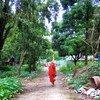 म्याँमार के यंगून शहर में, एक पगोड़ा के निकट से गुज़रता एक बौद्ध सन्त.