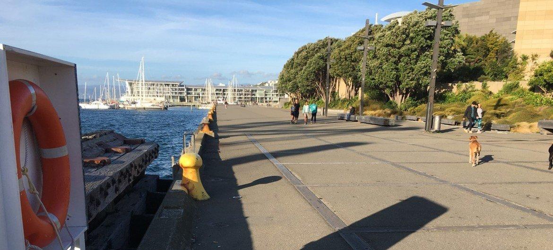 新西兰惠灵顿一条通常繁忙的海滨人行道在2019冠状病毒病大流行期间空旷无比。