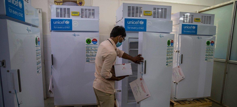 印度北方邦的一家医院内,工作人员正将新冠疫苗放入冷柜内进行低温保存。