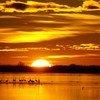 Sunrise in the Ebro Delta in Spain's Catalonia region.