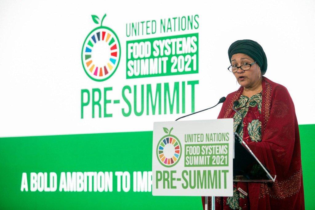 A Rome, les Etats membres de l'ONU planchent sur la transformation des systèmes alimentaires