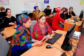 土库曼斯坦的统计学家在进行数据分析
