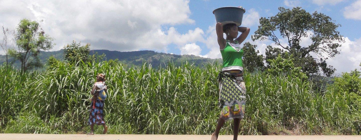 La sequía en Àfrica ha afectado la productividad de los cultivos de cereales.