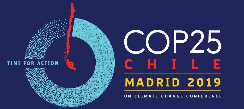 第25届联合国气候变化大会宣传图片。