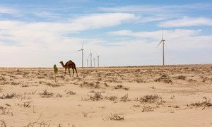 A windmill park on the outskirts of Nouakchott, the capital of Mauritania is aimed at giving more people access to renewable energy sources.