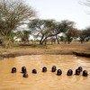 Des enfants jouant dans une mare d'eau dans la ville de Kaya, au nord du Burkina Faso.