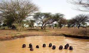 Niños jugando en un pozo de agua cerca de la ciudad de Kaya en el norte de Burkina Faso.