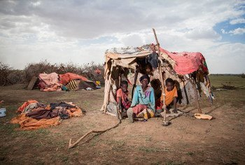 Une femme déplacée est assise dans une tente de fortune avec ses deux petits-enfants dans le district de Wajaale en Somalie. Ils ont été forcés de quitter Haro-Sheikh en raison de la grave sécheresse.