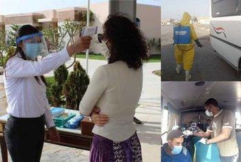 الإجراءات الوقائية في المنشآت السياحية المصرية