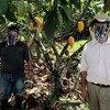 En el departamento del Tolima en Colombia, campesinos utilizan equipos de protección personal contra el COVID-19.