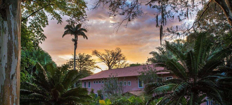 No fim da década de 1960, o Sítio chegou a abrigar a coleção mais representativa de plantas brasileiras