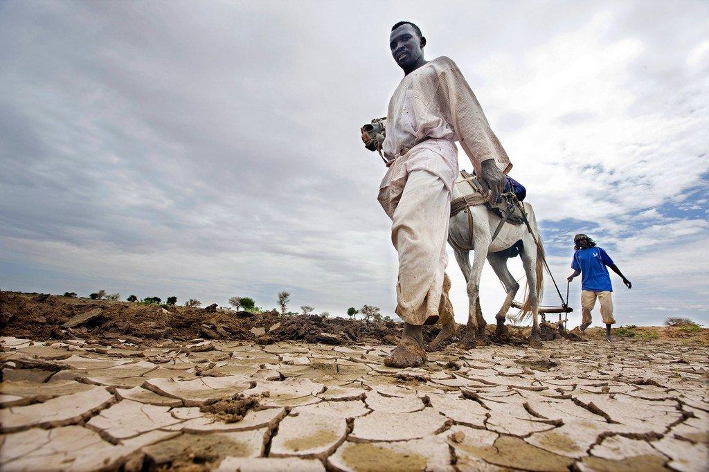 Los fenómenos meteorológicos extremos, como las sequías, están causando graves pérdidas económicas entre los campesinos de todo el mundo.