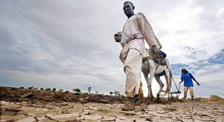 Clima continuará muito seco em vários países africanos