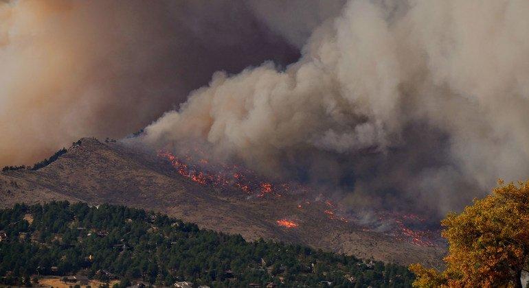 Шлейфы дыма поднимаются от пожара в Колорадо, США.