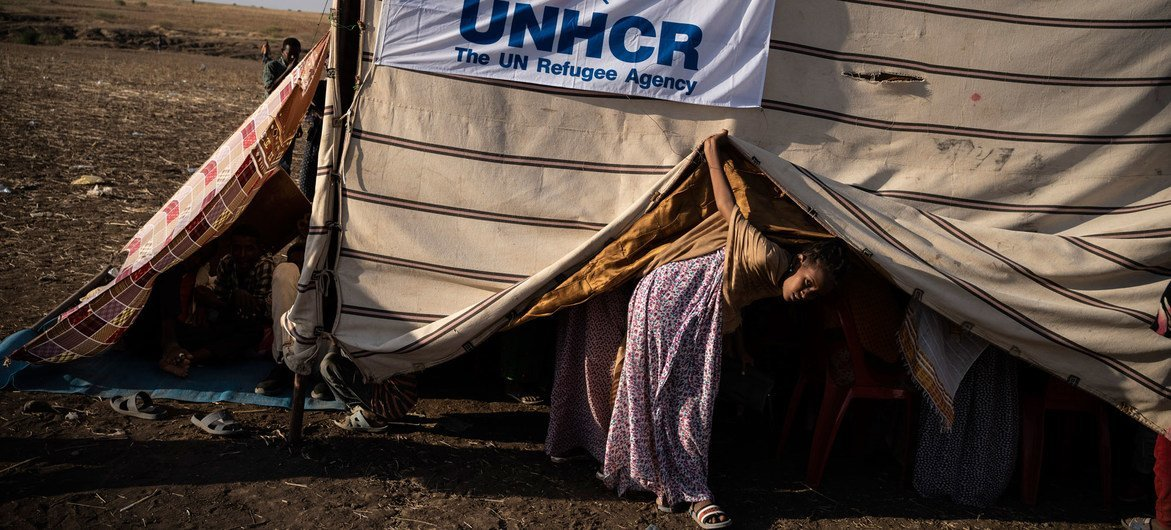 A young Ethiopian refugee looks out from a makeshift shelter at a transit site in Hamdayet, Sudan.