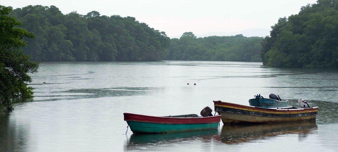 La selva del Darién, en Panamá.