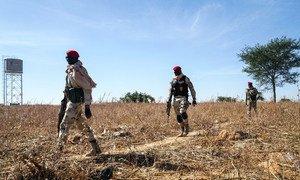 尼日尔的士兵正在该国与尼日利亚的边境线上巡逻。