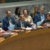 مجلس الأمن الدولي يناقش في جلسة طارئة المستجدات في سوريا