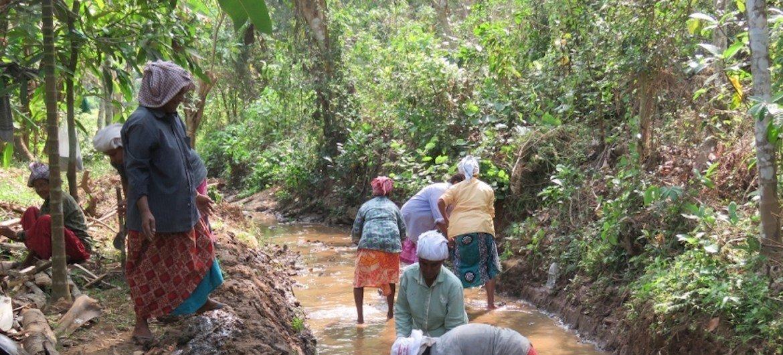 महात्मा गांधी राष्ट्रीय ग्रामीण रोज़गार योजना की टीमें केरल में नदी पुनर्स्थापन का कार्य कर रहीं हैं.