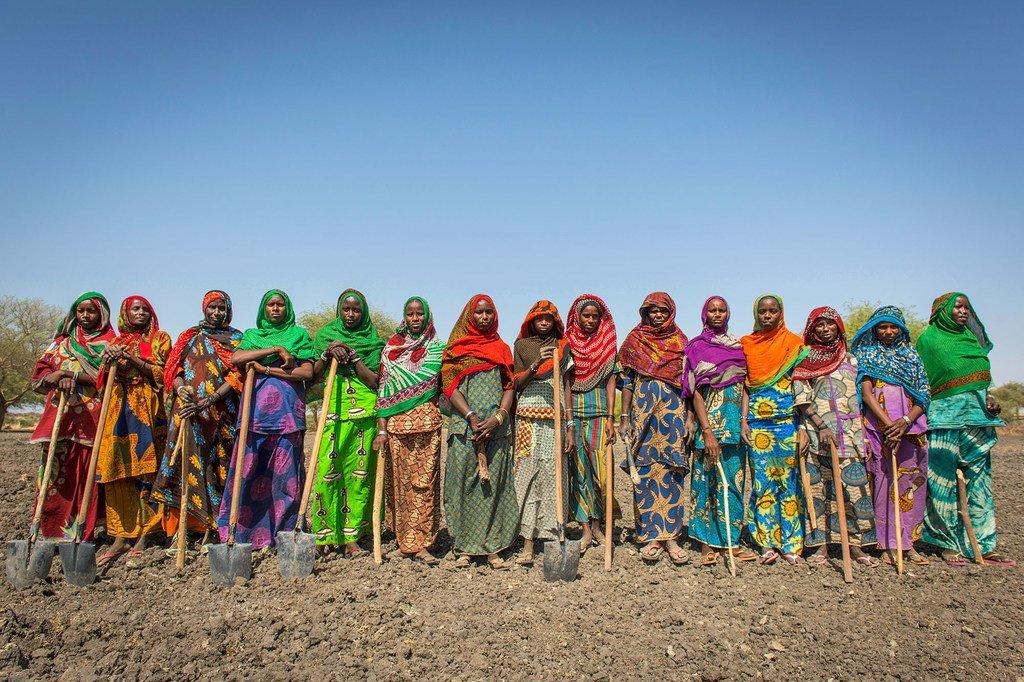 Au Tchad, les programmes d'aide alimentaire favorisent une agriculture durable et renforcent les revenus et les moyens de subsistance des populations de ce pays d'Afrique centrale