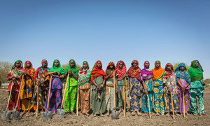 Food assistance programmes in Chad promote sustainable agriculture and strengthen incomes and livelihoods.