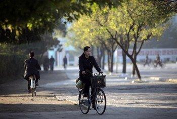 वोनसान शहर में साइकिल चलाती एक महिला. (फ़ाइल फ़ोटो)