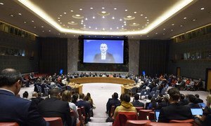 Nickolay Mladenov, UN Special Coordinator for the Middle East Peace Process, addresses the Security Council via video-link.