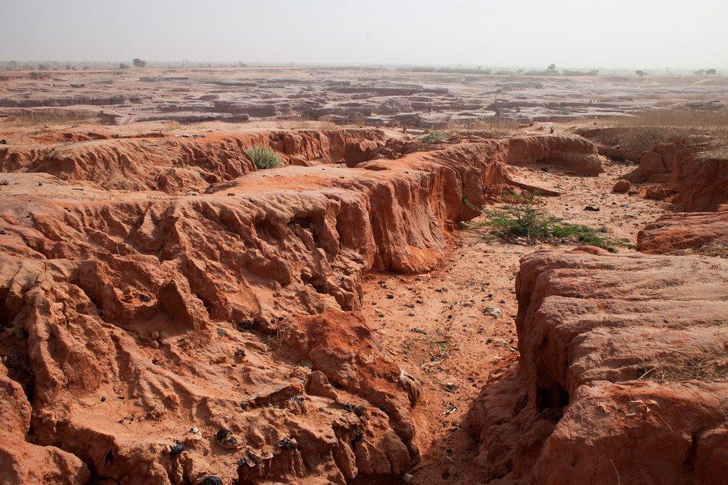 Mbinu endelevu za kusimamia ardhi kuna faida kwa maeneo kama vijijini nchini Niger.