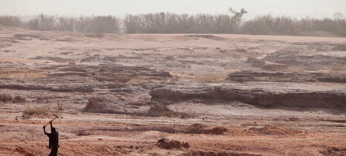 Algunas áreas de Níger sufren degradación debido a prácticas de explotación insostenibles.