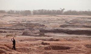 Áreas do Níger degradadas devido a práticas agrícolas insustentáveis.