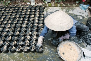 A woman  in Viet Nam makes environmentally-friendly biomass briquettes, a biofuel substitute to coal and charcoal cooking fuel.