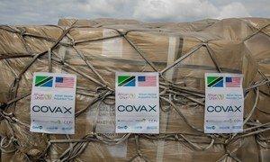 Llegada de vacunas del COVID-19 a través de COVAX a Tanzania
