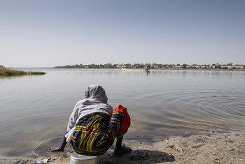Ожидается, что к 2050 году в странах Африки, Южной Азии и Латинской Америки изменение климата вытеснит с обжитых мест более 140 миллионов человек. На фото: озеро Чад в Африке.