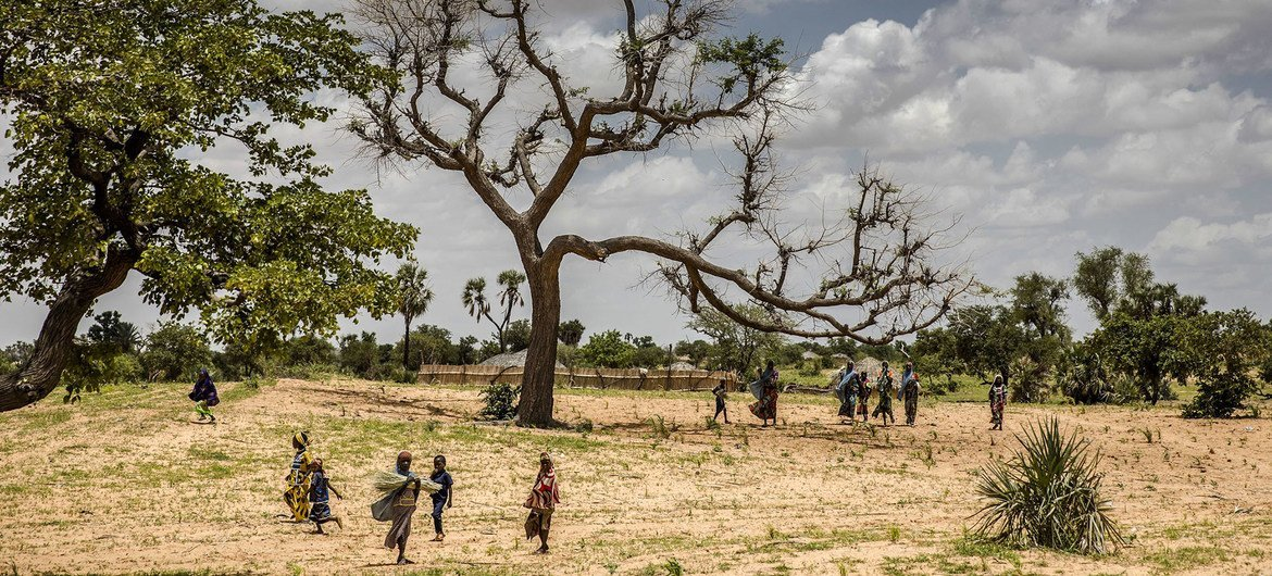 Up to 65 per cent of productive land is degraded, while desertification affects 45 per cent of Africa's land area.