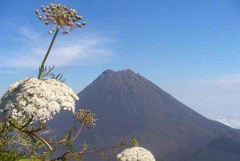 Em Cabo Verde, a Reserva da Biosfera do Fogo, única ilha com atividade vulcânica no sul do arquipélago, é também um ponto turístico