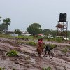 Perto de 700 mil pessoas já foram deslocadas pela violência na província de Cabo Delgado