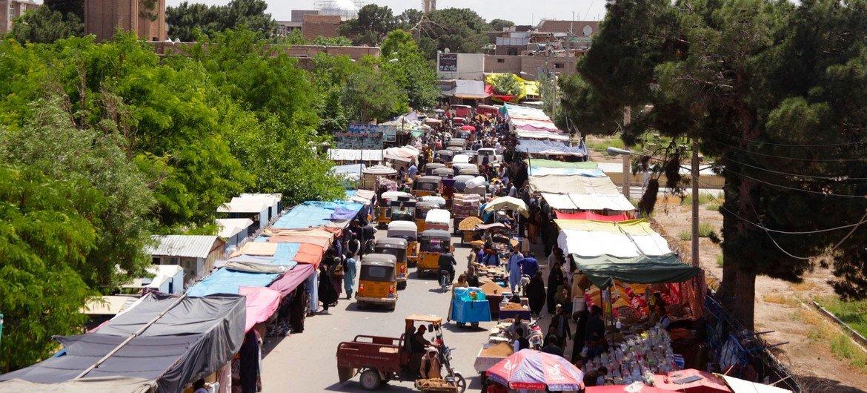 赫拉特位于阿富汗西北部。(资料图片)