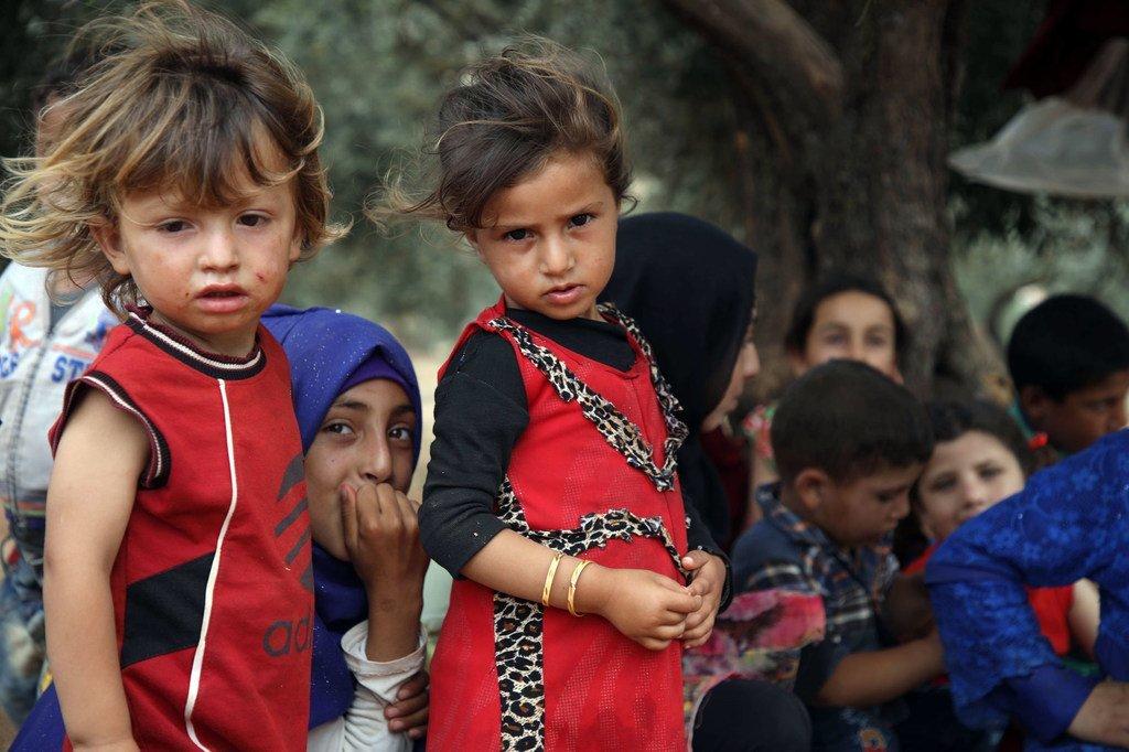 在逃离伊德利卜的敌对行动后,孩子们在土耳其边境附近的阿克拉巴特村的一个临时营地的树下休息。(2019年6月)