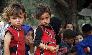 Crianças da Síria junto da fronteira com a Turquia, fugindo da violência em Idlib